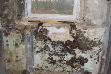 Wet Rot affecting interior wall